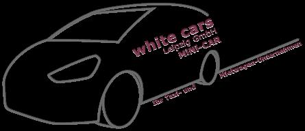 rollstuhl und oder tragestuhlfahrten white cars leipzig. Black Bedroom Furniture Sets. Home Design Ideas